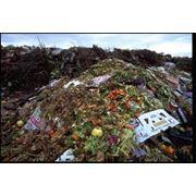 Захоронение строительных отходов фото