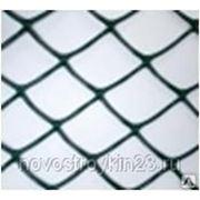Пластиковая сетка 50х74 (полимерная) фото