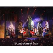 Концерты шоу-программы фото
