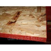 OSB LA CANADA 12 mm. фото