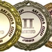 Медаль металлическая на типовой подложке фото