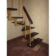 "Интерьерная лестница ""Elise"" фото"