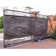 Ворота № 38 фото