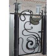 Ворота № 42 фото