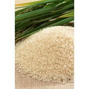 Крупа рисовая фото