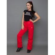Горнолыжные брюки D-8007 фото
