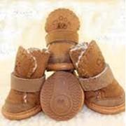 Собачья обувь фото