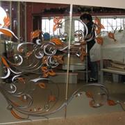 Зеркала для шкафа купе с элементами рисунка фото