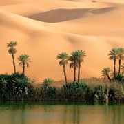 Туры в Тунис фото