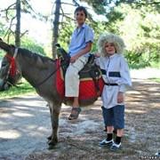 Организация праздников с участием лошадей, пони и осликов.Одесская область, Великодолинское, Большая Долина фото