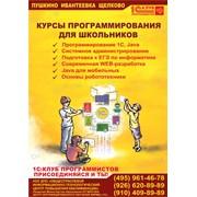 Курсы подготовки к ЕГЭ по информатике Пушкино  фото
