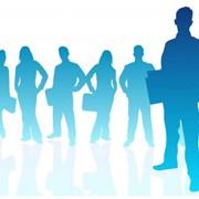 Кадровый учет: оформление трудовых договоров, штатного расписания и личных карточек сотрудников фото