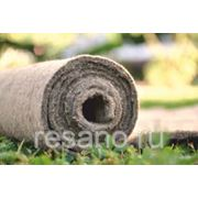 Биомат для озеленения. фото