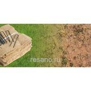 Биомат с семенами трав фото