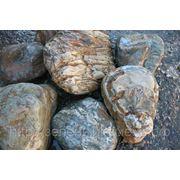 Камень «Бонус» для альпийских горок и садов камней. фото