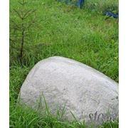 Ландшафтный дизайн, камни - валуны декоративные. фото