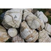 Камень «мозговик» фото