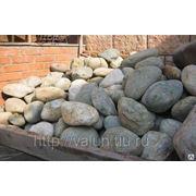 Камень Валун 30-60 см. фото