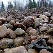 Булыжник (камень булыжный) фото