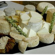 Козий сыр считается самым полезным для здоровья, являясь источником кальция, белков и молочнокислых бактерий, благотворно влияющих на микрофлору фото