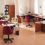 Мебель для персонала Скиф фото