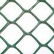 Сетки пластиковые для сада и огорода код Ф ячейка 70х58 фото