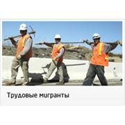 Массовый подбор рабочих строительных специальностей фотография