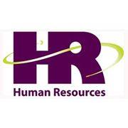 HR-консультации HR-услуги фото
