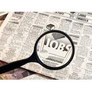 Поиск работы. фото
