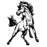 Аренда кареты или саней с конями фото