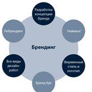 Разработка и реализация концепции