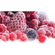 Системы холодоснабжения. Проектирование поставка и монтаж систем холодоснабжения для пищевой промышленности. фото