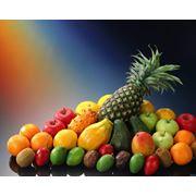 Доставка фруктов и овощей в любой регион. фото