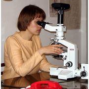 Исследования геологические фото