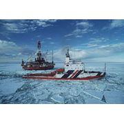 Оценка перспектив нефтегазоносности Арктического шельфа