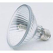 Производство электрических ламп и осветительного оборудования фото