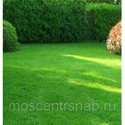 Пленка защитная,газоны универсальные теневыносливые спортивные,приманки для грызунов фото