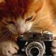 Услуги рельефной фотографии фото