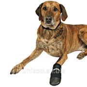 Чулок защитный для собак Trixie Walker (Трикси) XXL фото