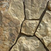 """Натуральный камень песчаник желто-коричневый """"дракон"""" фото"""