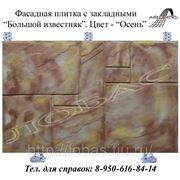 Фасадная плитка с закладными «Большой известняк», цвет «Листопад» фото