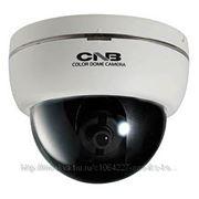 """CNB DBM-21S Видеокамера купольная, цветная, матрица 1/3"""", 600твл, детектор движения, 12 В. фото"""