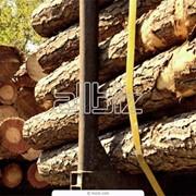 Антисептики для древесины фото