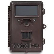 Фотоловушка (лесная камера) Bushnell Trophy Cam HD Black LED #119477 фото