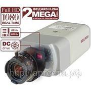 BD4370 2-мегапиксельная IP-видеокамера под C\CS объектив, 25 к/с 1920х1080 фото