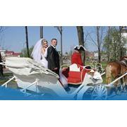 Катание свадеб на каретах фото