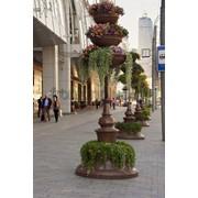 Благоустройство и озеленение городских территорий фото