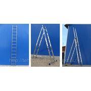 Лестницы двухсекционные (универсальные лестницы) - до 9 метров фото