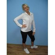 Одежда спортивная (джемпер женский на молнии и бриджи) фото