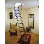 Лестница чердачная Oman Ножничная фото